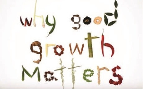 Why good growth matters resize